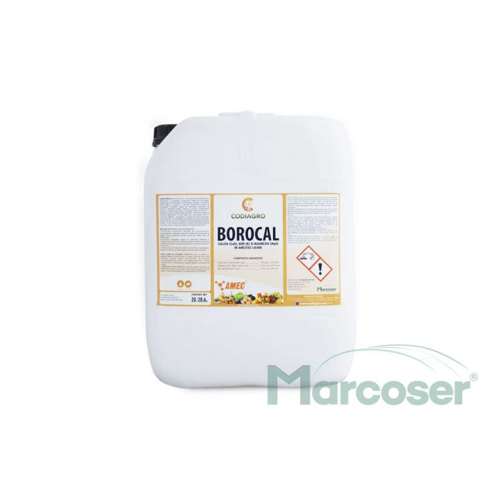 BOROCAL-20L-1